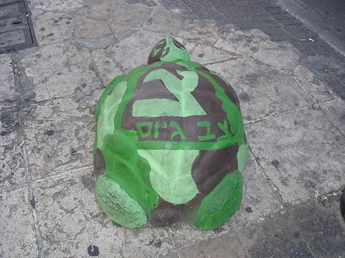 Painted turtle street art