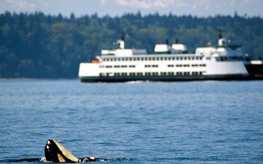 Harsh new climate for Puget Sound Partnership