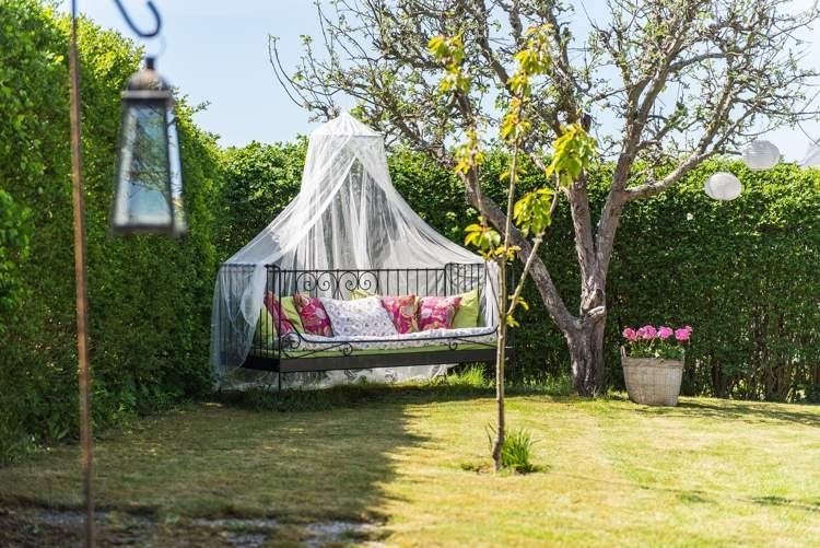 deko ideen welche pflanzen als sichtschutz f r garten und. Black Bedroom Furniture Sets. Home Design Ideas