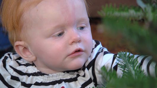 Tiny transplant: A special Christmas for toddler saved by record-setting surgery | KSL.com