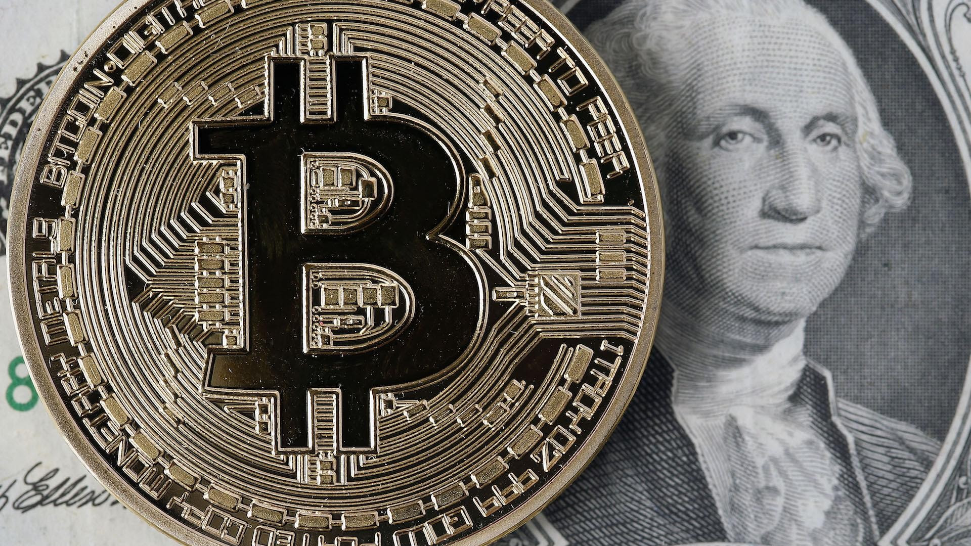 bitcoin wallet vs blockchain