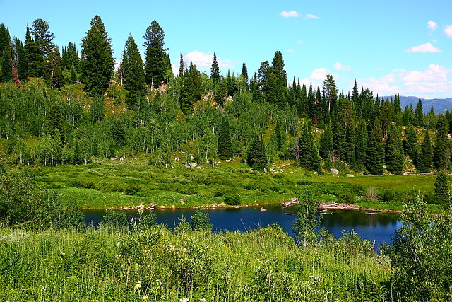 IMG_3784 Moose Pond