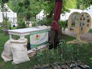 Ippenburger Gartenfestival 2012 Foto Brandt