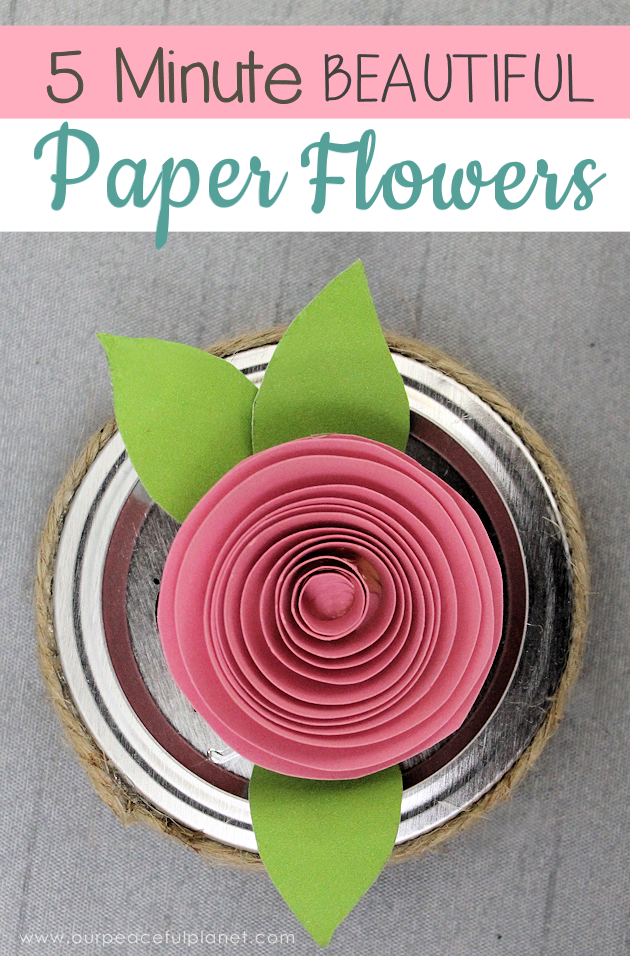 Make these beautiful DIY paper flowers in 5 minutes or less! Use them in your crafts or decorating. Attach them to a lamp shade! Even use them in your hair!