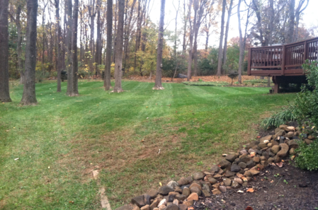 Leaf Removal - Fall cleanup, lawn service in sykesville md, ellicott city, columbia maryland