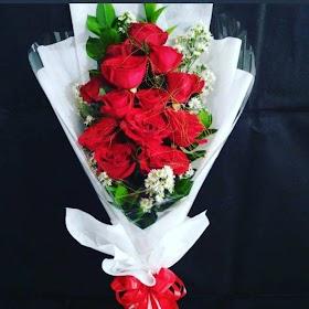 Gambar Bunga Mawar Merah Asli