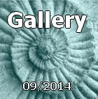 Gallery09/2014