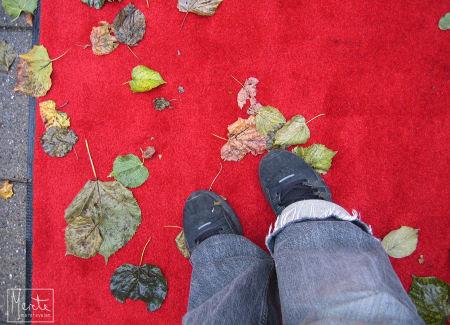 feet :: føtter {torsdag}