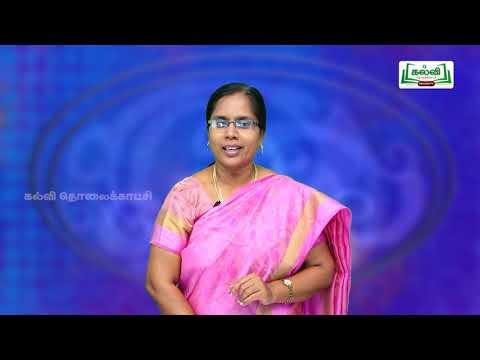 8th Social Science Bridge Course நிலத்தோற்றங்கள் நாள் 3&4 Kalvi TV