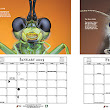2015 Extreme Macro Photography Calendar only £15