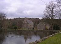 Duck pond at New Abbey