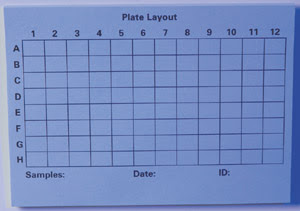 96-well Plate Template Blank Related Keywords & Suggestions - 96 ...