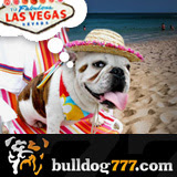 Bulldog777 Contest Winner Takes Cash Not Las Vegas Vacation