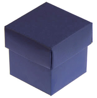 Image result for Mysterious Blue Box