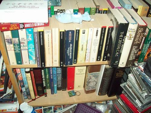 Bookshelves 14