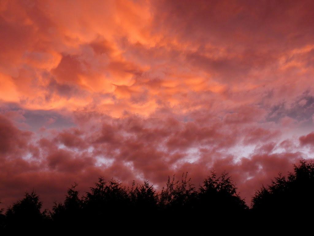 Before Irene Sunset