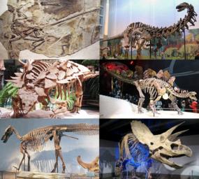53 Gambar Semua Dinosaurus Paling Hist