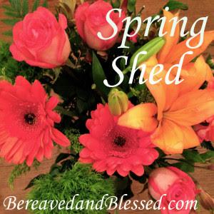 Spring Shed Logo