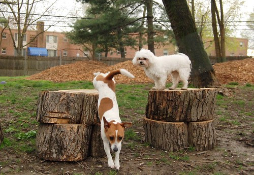 Stump is all yours, Rugby!