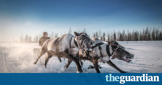 Stunning imagery from the Smithsonian's 14th annual photo competition | Travel | The Guardian