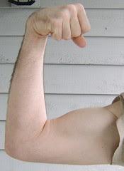 Year3-Arm