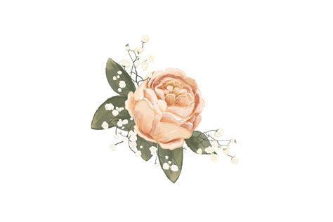 Elegant Wedding Flowers   PNG/JPEG   Clip Art Illustrations