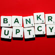 Life After Bankruptcy - What's in Store for a Recent Filer?