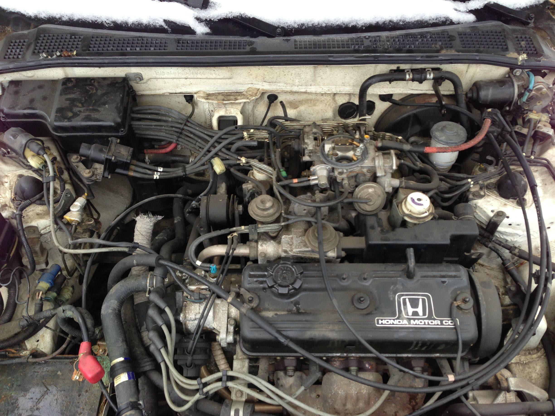 1989 Honda Accord Engine Diagram Wiring Diagram Ultimate2 Ultimate2 Musikami It