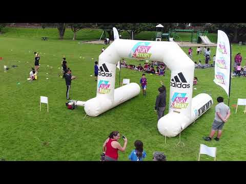 Panmure Bridge's Cross Country 2017