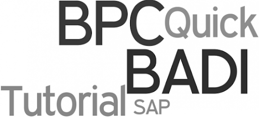 SAP BPC BADI - Quick Tutorial for Newbies