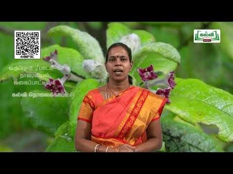 11th  Botany வகைப்பாட்டியல் மற்றும் குழுமப்பரிணாமவகைப்பாட்டியல் அலகு 11 பாடம் 5பகுதி 1  Kalvi TV