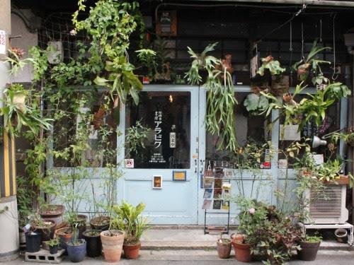 sleepyberry:cafe 1