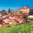 Ooty Hotels, Hotels in Ooty, Budget, Cheap, Luxury, Cottages, Resorts and Dormitory