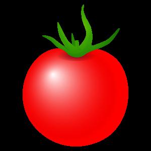 トマトのイラスト4 花植物イラスト Flode Illustration フロデ