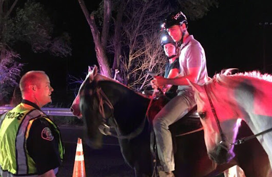 Even horses pass through DUI checkpoints in Jefferson County