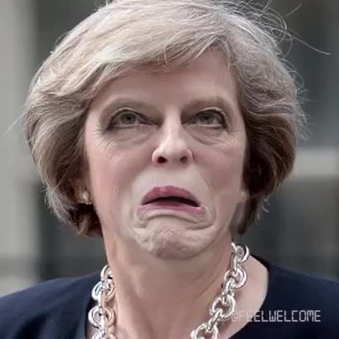 Theresa May Face Generator (Tap to stop)