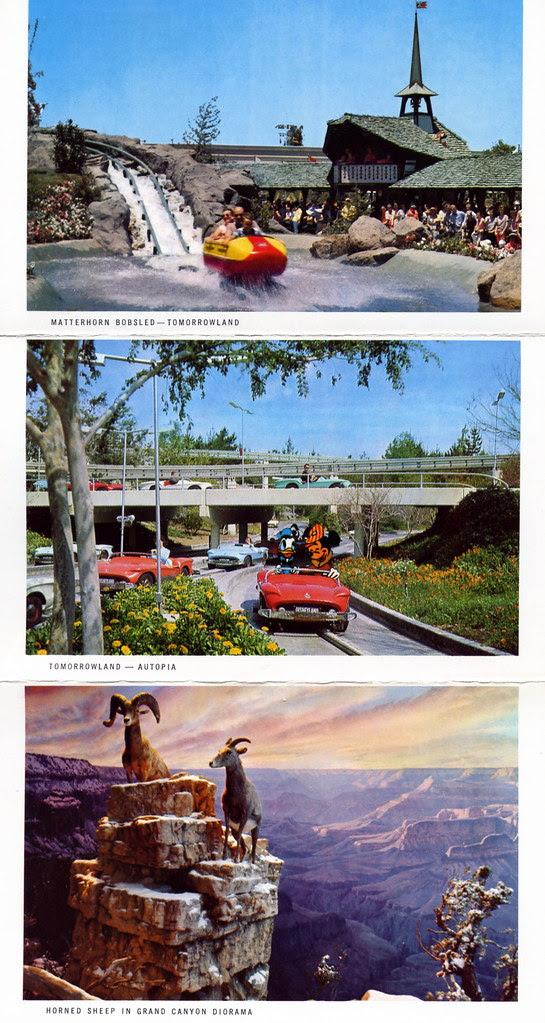 This is Disneyland 9