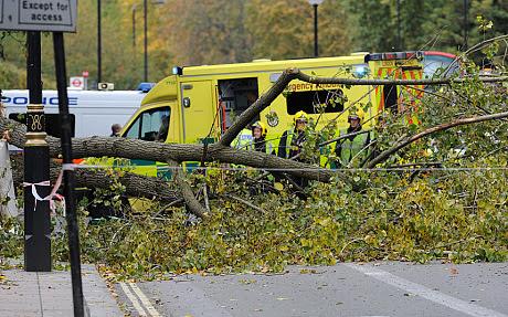 Κσακοκαιρία, Αγγλία, πτώση δέντρου