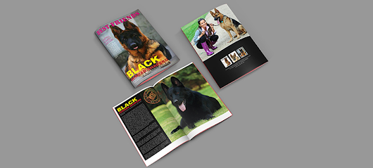 Free Pets Brochure InDesign Template - GraphicLoads