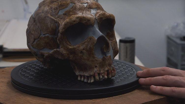 Molde de la cabeza neandertal hallada en una cueva en Irak. La cara del modelo creado por ordenador se basa en este especímen. Foto: VixPix Films/BBC.