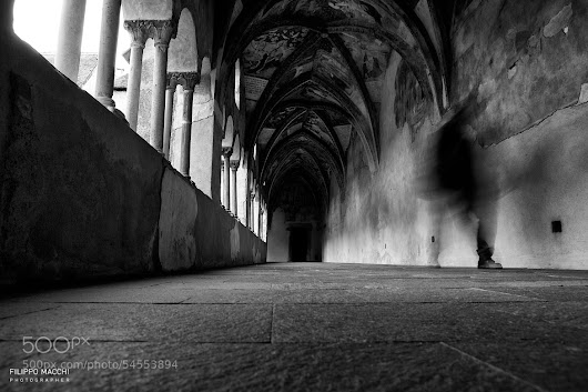 Ghost in the cloister