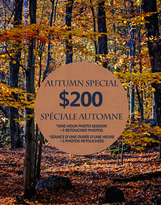 Autumn Promotion