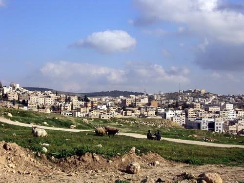 Jerash (11)