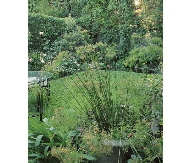 jardines, ideas, arquitectura, diseño