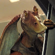 Jar Jar Binks, the sad man • r/CoderRadio