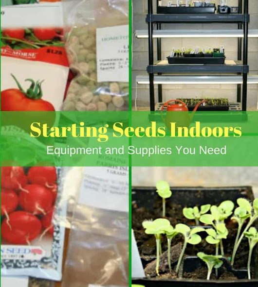 Starting Seeds Indoors: Equipment and Supplies - Home Garden Joy