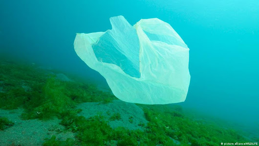 Opinion: Plastic bag bans won't save the environment | Business | DW | 03.03.2015