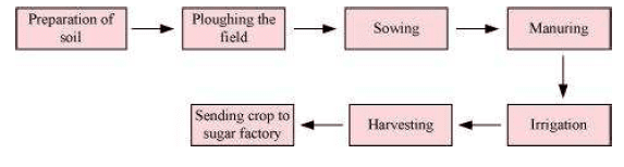 CBSE NCERT Class VIII (8th) | Science | Biology, Crop Production and Management,  CBSE NCERT Solved Question Answer, CBSE NCERT Solution.