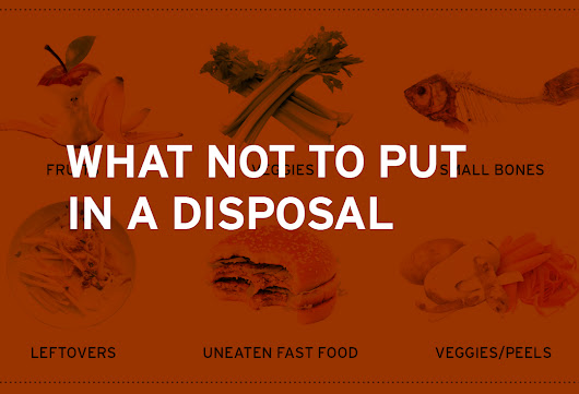 What Not To Put in a Garbage Disposal - InSinkErator