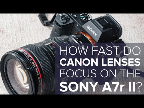 The Sony a7R II Has Greatly Improved Focusing with Canon Lenses | Studio Fashion Shoots